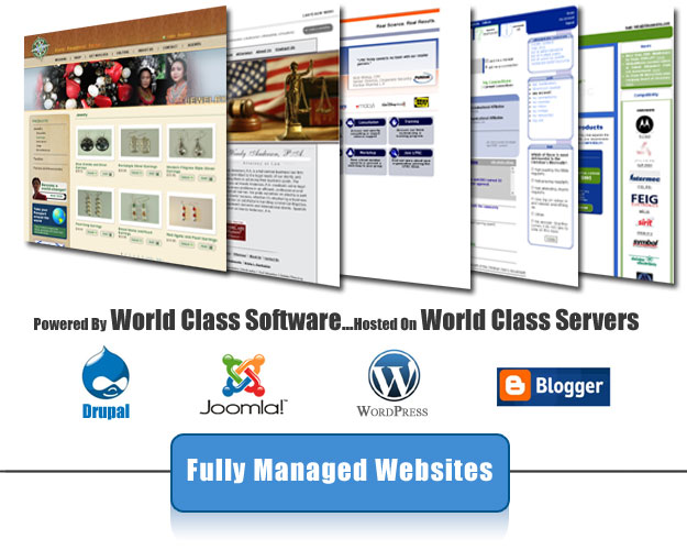 We build websites that sell and are fully managed